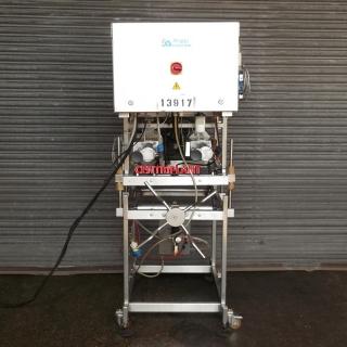 13917 - RIGGS MODEL 1000/2.285 TWIN HEAD FILLING MACHINE